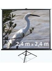 Projektora ekrāna 250x180 cm noma*
